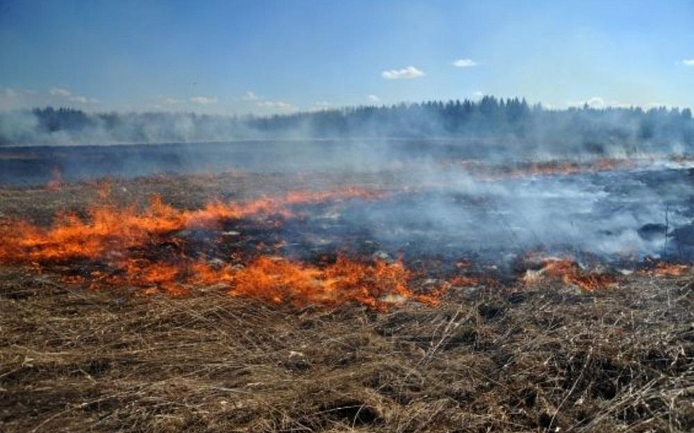 В Медногорске по фронту 6 километров горит сухая трава