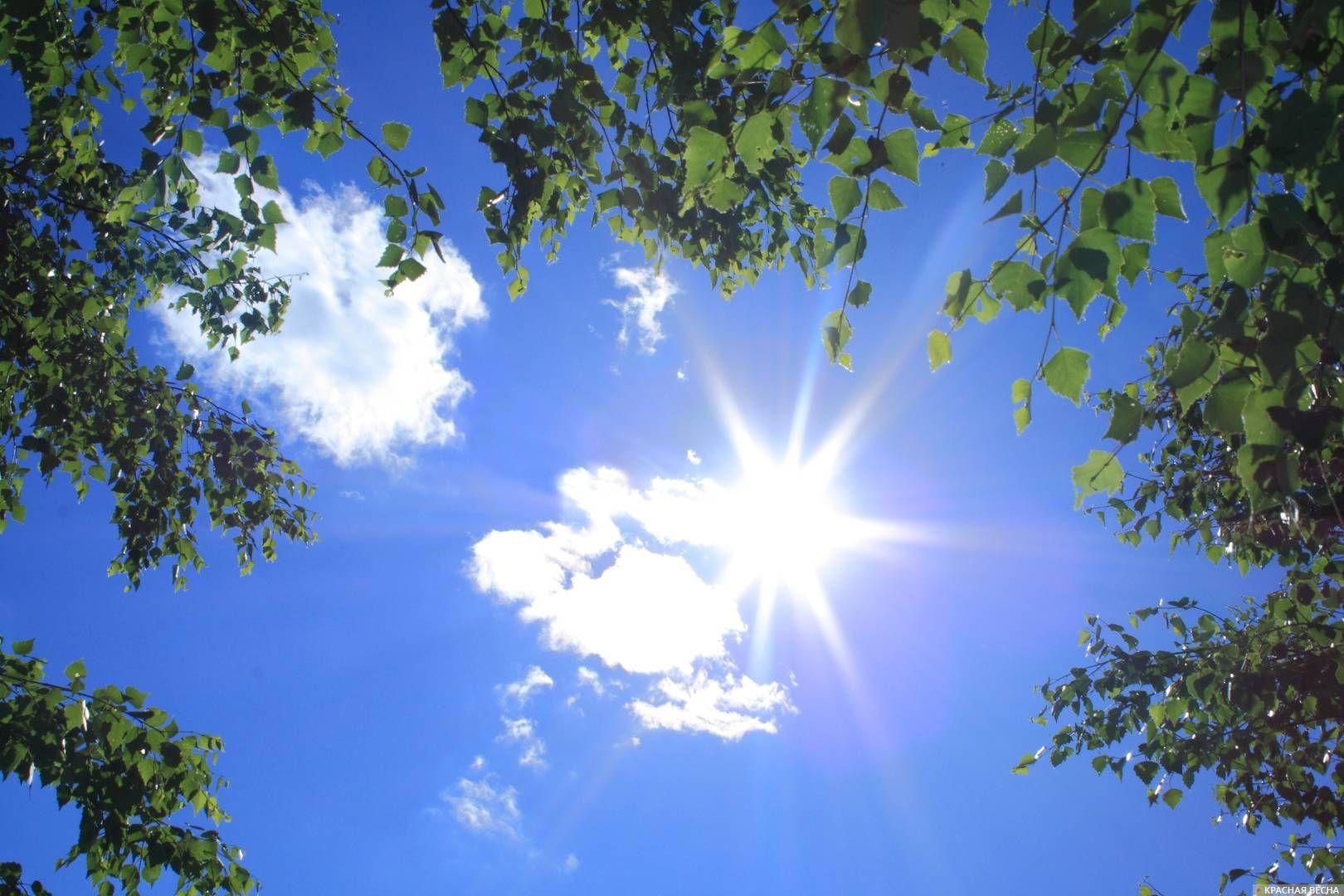 На юг Оренбуржья возвращается тридцатиградусная жара