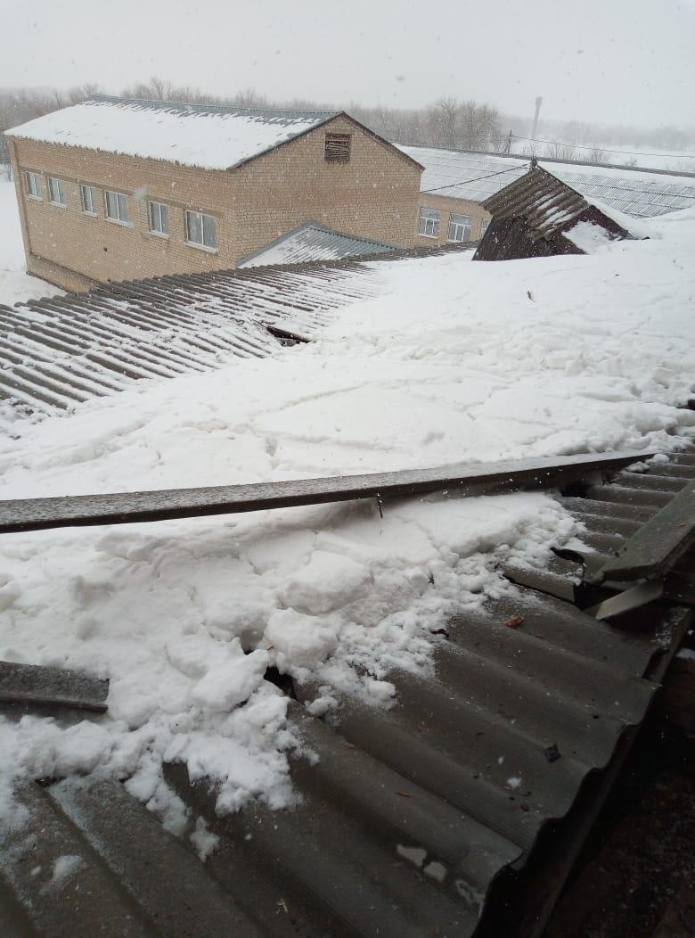 Сусликов отчитался Паслеру о ремонте кровли в школе Ясной Поляны